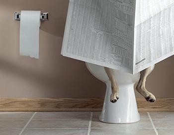 Conseils pour apprendre la propreté
